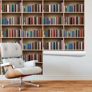 Bookshelf Wallpaper FD-206-04
