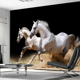 Noble Horses 3D Wallpaper