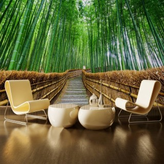 Japan Bamboo Forest Wall Poster