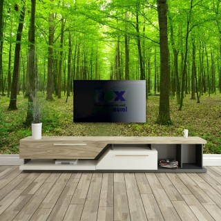 Forest Landscape Wall Poster