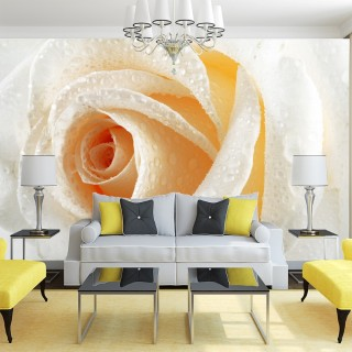 3D Yellow - White Rose Wall Poster