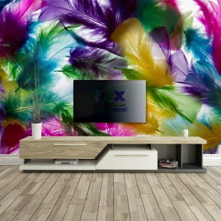Colorful Animal Feathers Wall Poster